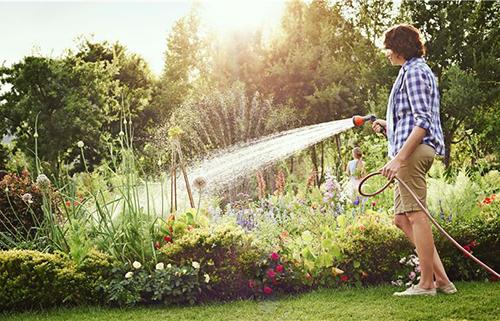 Sistemi Di Irrigazione Per Giardini Ecco 2 Opzioni Per Il